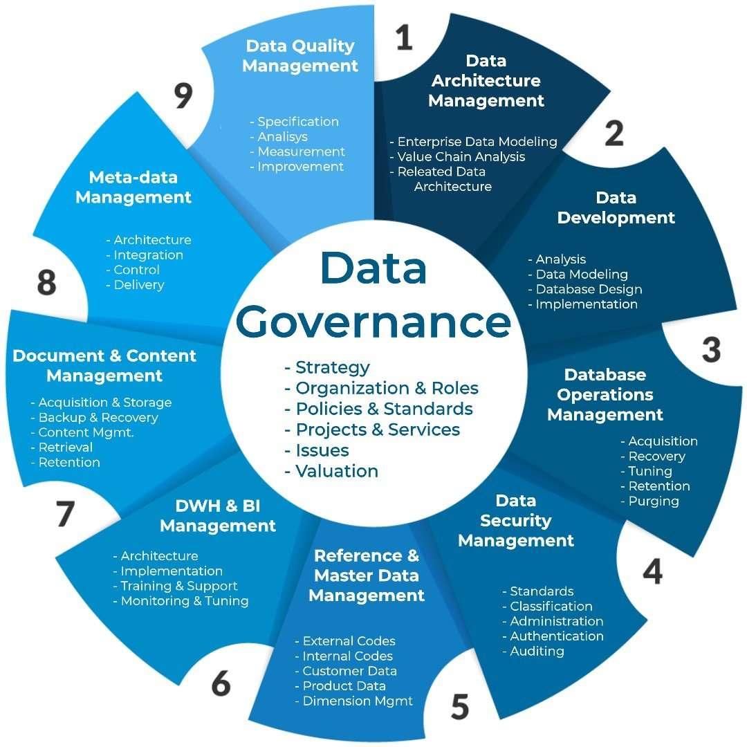 Framework di Data Governance della DAMA (Data Management Association)