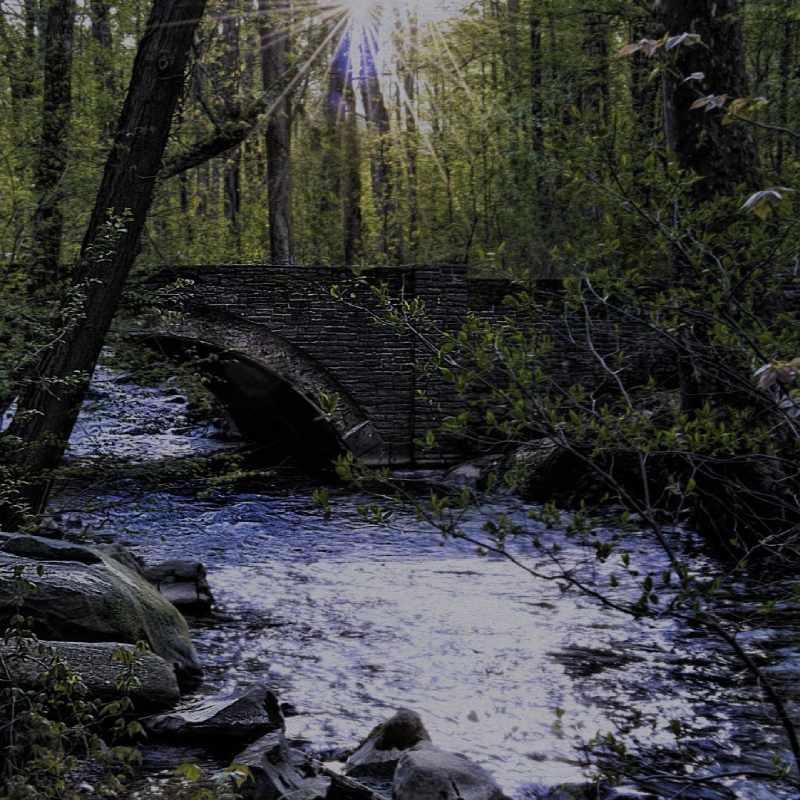 bnova percorso storico nei big data rappresentato con la forza dell'acqua che scorre e un ponte come transizione